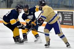 CIAC Ice Hockey; Focused on Newtown 7 vs. Mt. Everett 1 - Photo 604