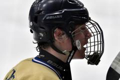 CIAC Ice Hockey; Focused on Newtown 7 vs. Mt. Everett 1 - Photo 619