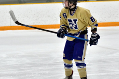 CIAC Ice Hockey; Focused on Newtown 7 vs. Mt. Everett 1 - Photo 719