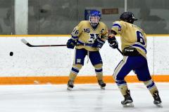 CIAC Ice Hockey; Focused on Newtown 7 vs. Mt. Everett 1 - Photo 725