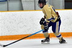 CIAC Ice Hockey; Newtown 2 vs. Daniel Hand 6 - Photo # 1135