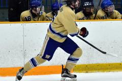 CIAC Ice Hockey; Newtown 2 vs. Daniel Hand 6 - Photo # 1320
