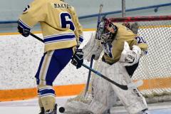 CIAC Ice Hockey; Newtown 2 vs. Daniel Hand 6 - Photo # 1350