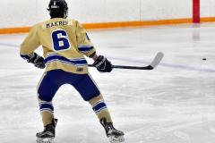 CIAC Ice Hockey; Newtown 2 vs. Daniel Hand 6 - Photo # 209