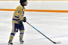 CIAC Ice Hockey; Newtown 2 vs. Daniel Hand 6 - Photo # 631