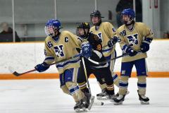 CIAC Ice Hockey; Newtown 2 vs. Daniel Hand 6 - Photo # 768