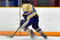 CIAC Ice Hockey; Newtown 2 vs. Daniel Hand 6 - Photo # 872