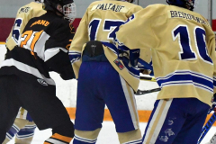 CIAC Ice Hockey; Newtown 2 vs. Daniel Hand 6 - Photo # 893
