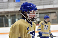 CIAC Ice Hockey; Newtown 2 vs. Daniel Hand 6 - Photo # 1697