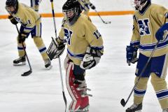 CIAC Ice Hockey; Newtown 2 vs. Daniel Hand 6 - Photo # 296
