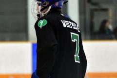 CIAC Ice Hockey; Newtown 4 vs. SH,LI,TH,NO 1 - Photo # (36)