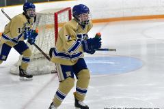 CIACT D3 Ice Hockey; #8 Newtown 7 vs. #9 Wilton 2 - Photo # 040