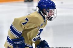 CIACT D3 Ice Hockey; #8 Newtown 7 vs. #9 Wilton 2 - Photo # 095