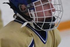 CIACT D3 Ice Hockey; #8 Newtown 7 vs. #9 Wilton 2 - Photo # 110