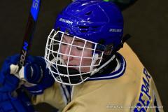 CIACT D3 Ice Hockey; #8 Newtown 7 vs. #9 Wilton 2 - Photo # 1227