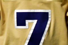 CIACT D3 Ice Hockey; #8 Newtown 7 vs. #9 Wilton 2 - Photo # 1238