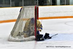 CIAC Ice Hockey; Focused on Newtown 7 vs. Mt. Everett 1 - Photo 248