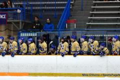 CIAC Ice Hockey; Focused on Newtown 7 vs. Mt. Everett 1 - Photo 489
