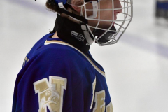 CIACT Ice Hockey D3 QFs; #1 Hand 5 vs. #8 Newtown 0 - Photo # 1175