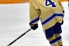 CIAC Ice Hockey; Focused on Newtown 7 vs. Mt. Everett 1 - Photo 1030