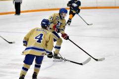 CIAC Ice Hockey; Focused on Newtown 7 vs. Mt. Everett 1 - Photo 1045