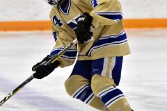 CIAC Ice Hockey; Focused on Newtown 7 vs. Mt. Everett 1 - Photo 174