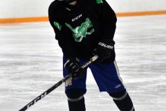 CIAC Ice Hockey; Newtown 4 vs. SH,LI,TH,NO 1 - Photo # (70)