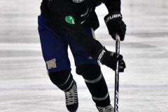 CIAC Ice Hockey; Newtown 4 vs. SH,LI,TH,NO 1 - Photo # (92)