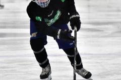 CIAC Ice Hockey; Newtown 4 vs. SH,LI,TH,NO 1 - Photo # (93)