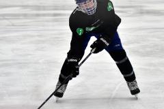 CIAC Ice Hockey; Newtown 4 vs. SH,LI,TH,NO 1 - Photo # (94)