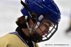 CIAC Ice Hockey; Focused on Newtown 7 vs. Mt. Everett 1 - Photo 142