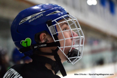 CIAC Ice Hockey; Newtown 4 vs. SH,LI,TH,NO 1 - Photo # (124)