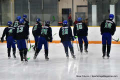 CIAC Ice Hockey; Newtown 4 vs. SH,LI,TH,NO 1 - Photo # (13)