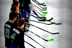 CIAC Ice Hockey; Newtown 4 vs. SH,LI,TH,NO 1 - Photo # (278)