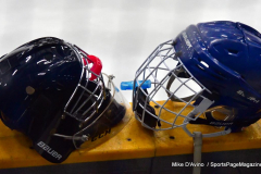 CIAC Ice Hockey; Newtown 4 vs. SH,LI,TH,NO 1 - Photo # (283)
