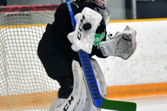 CIAC Ice Hockey; Newtown 4 vs. SH,LI,TH,NO 1 - Photo # (37)