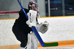 CIAC Ice Hockey; Newtown 4 vs. SH,LI,TH,NO 1 - Photo # (39)