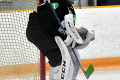 CIAC Ice Hockey; Newtown 4 vs. SH,LI,TH,NO 1 - Photo # (42)