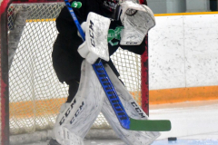 CIAC Ice Hockey; Newtown 4 vs. SH,LI,TH,NO 1 - Photo # (43)