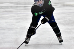 CIAC Ice Hockey; Newtown 4 vs. SH,LI,TH,NO 1 - Photo # (94)