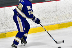 CIAC Ice Hockey; L.H.- H-K, Cogin. 8 vs Newtown 1 - Photo # (574)