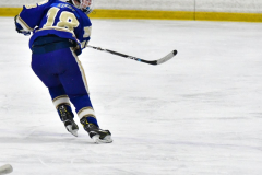 CIAC Ice Hockey; L.H.- H-K, Cogin. 8 vs Newtown 1 - Photo # (868)
