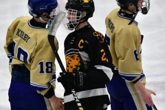 CIAC Ice Hockey; Newtown 2 vs. Daniel Hand 6 - Photo # 2015