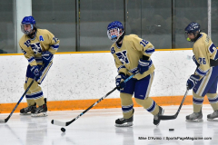 CIACT D3 Ice Hockey; #8 Newtown 7 vs. #9 Wilton 2 - Photo # 093