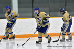 CIACT D3 Ice Hockey; #8 Newtown 7 vs. #9 Wilton 2 - Photo # 094