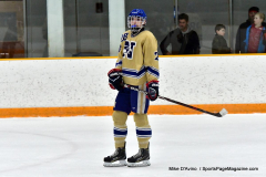 CIACT D3 Ice Hockey; #8 Newtown 7 vs. #9 Wilton 2 - Photo # 1218
