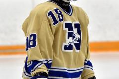 CIACT D3 Ice Hockey; #8 Newtown 7 vs. #9 Wilton 2 - Photo # 1601