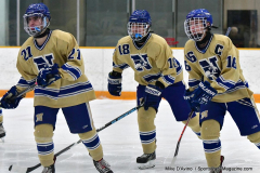 CIACT D3 Ice Hockey; #8 Newtown 7 vs. #9 Wilton 2 - Photo # 164