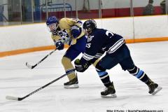 CIACT D3 Ice Hockey; #8 Newtown 7 vs. #9 Wilton 2 - Photo # 2047