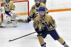 CIACT D3 Ice Hockey; #8 Newtown 7 vs. #9 Wilton 2 - Photo # 2160